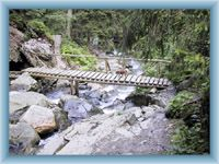 Ścieżka nauczna wokół potoka