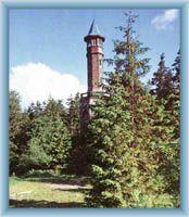 Wieża widokowa latem