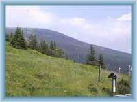 Łyska góra od Dworaczek