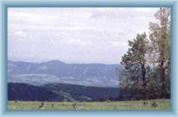 Widok z Rychorskiego grzbietu na sąsiedni grzbiet Wranich gór