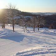 Ski areał Korzenow - Prichovice - SKIREGION.CZ