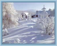 Luisina Dolina w zimie