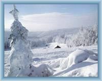 Szerlich w zimie